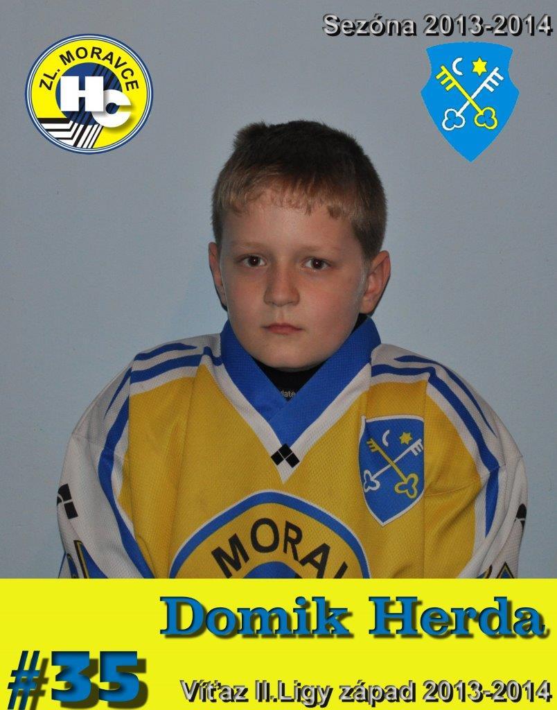 T-Herda Dominik 35